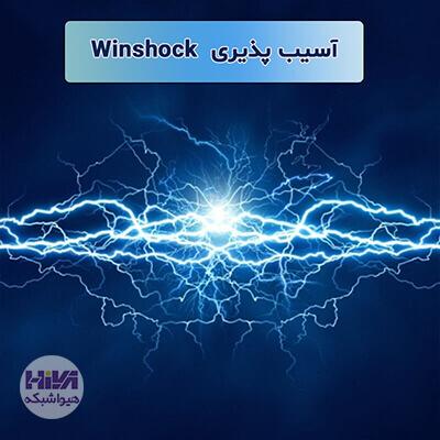 آسیب پذیری Winshock